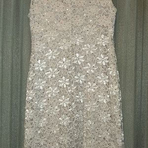 Dress Barn | Established 1962 | Lace Dress